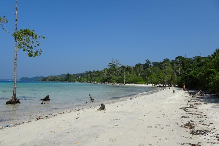 Havelock-Island-Andaman-Islands