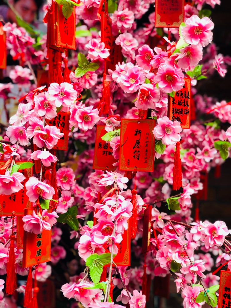 Peach Blossom Shanghai